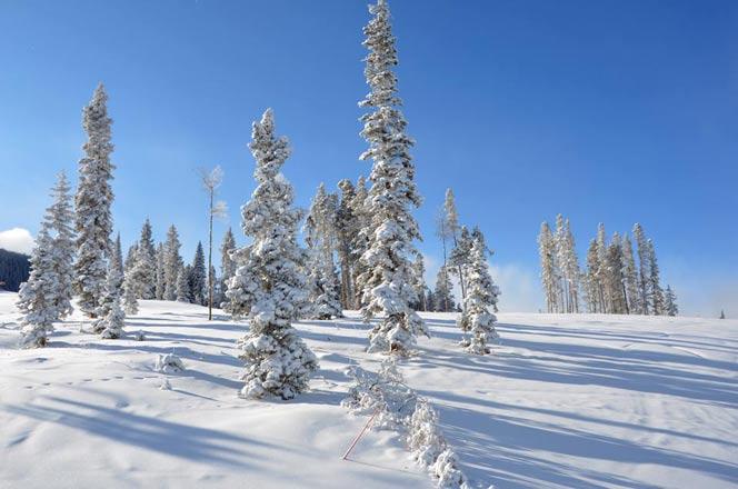 December 4 2011 Beaver Creek – NEW SNOW!