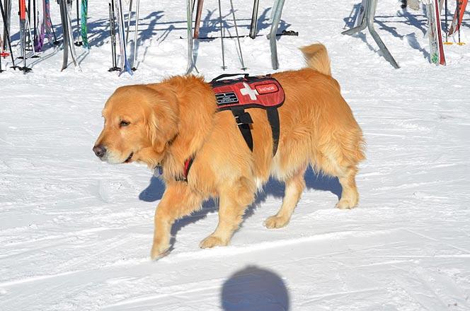 First school ski day December 9 Vail