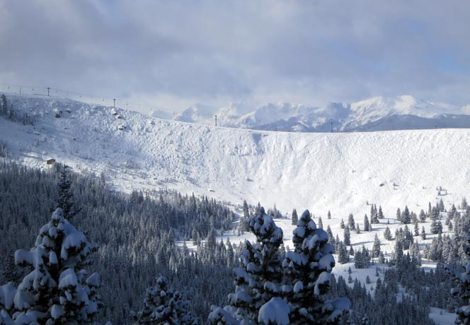 January 29 – 8 inches new snow reported