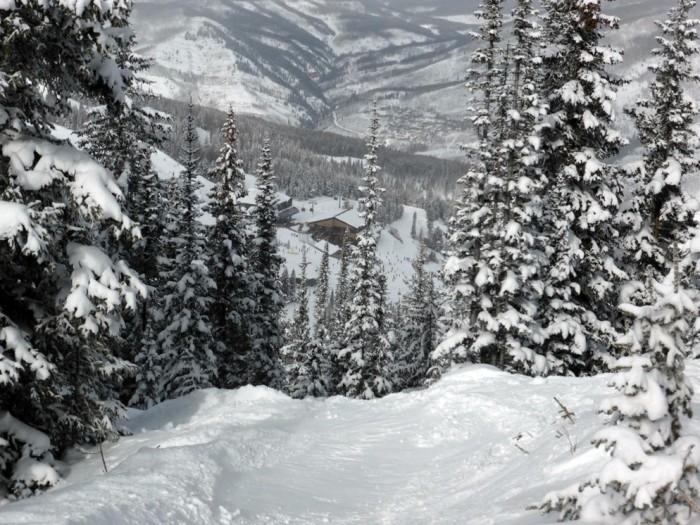 Vail Mountain under chair 4