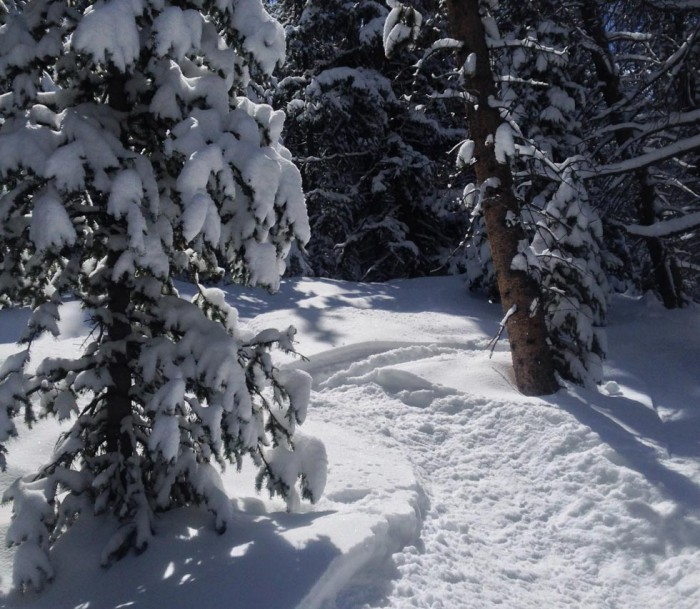 April 14 POW day Vail
